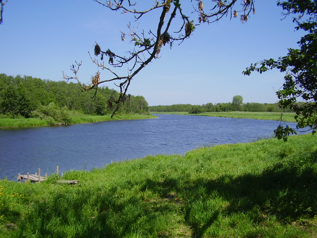 Kasari jõgi